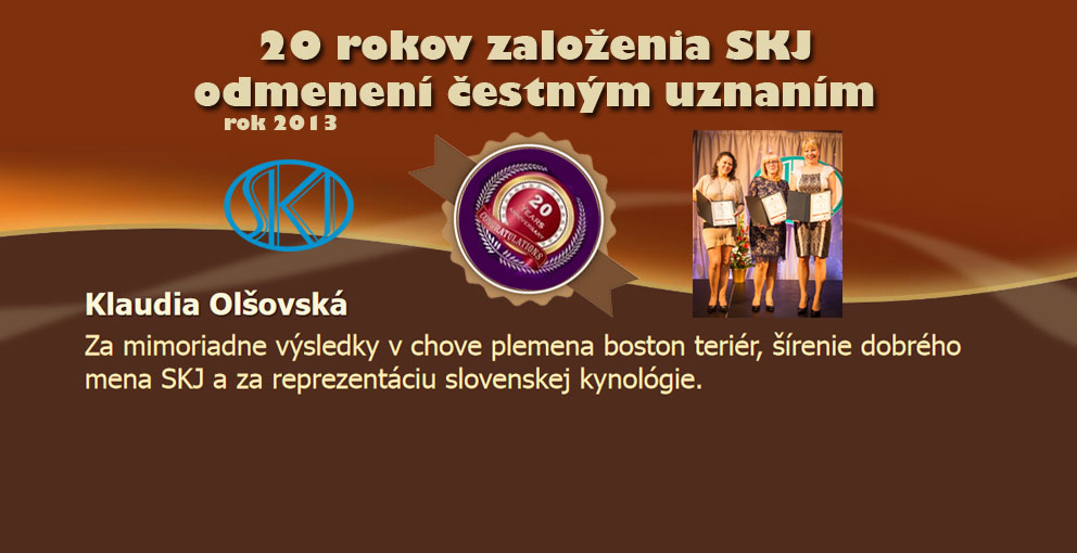 Ocenenie-2013web