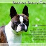 Boadicea Beauty Gremlins
