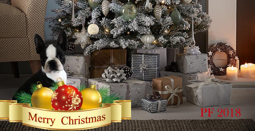 Vesele Vianoce 2 a PF 2018 na web copy copy